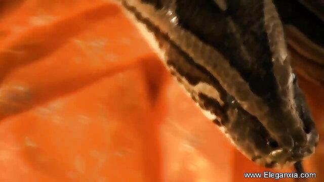 अश्लील कोई पंजीकरण  HdT बीपी फिल्म देसी क्लासिक – माया केंड्रिक